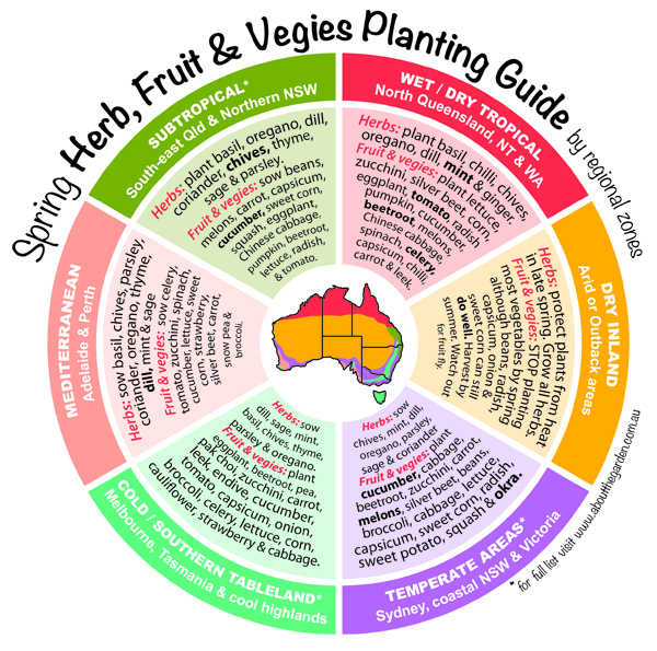 Spring Herb, Fruit & Vegies Planting Guide by temperate zones Au